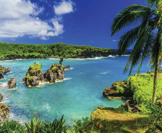 Las Vegas, San Francisco & Hawaiian Islands Cruise
